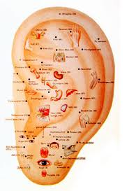 Auricular Acupuncture: Treating the Ears? | Toronto
