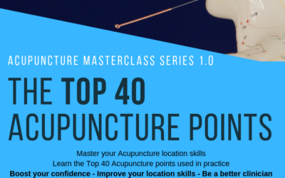 Acupuncture Masterclass – The Top 40 Points